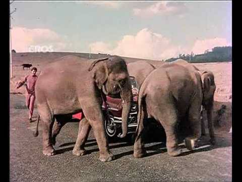 Video Chal Chal Chal Mere Saathi (Old Video Song) | Haathi Mere Saathi | Rajesh Khanna & Tanuja download in MP3, 3GP, MP4, WEBM, AVI, FLV January 2017