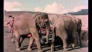 Nonton Chal Chal Chal Mere Saathi (Old Video Song)   Haathi Mere Saathi   Rajesh Khanna & Tanuja Film Subtitle Indonesia Streaming Movie Download