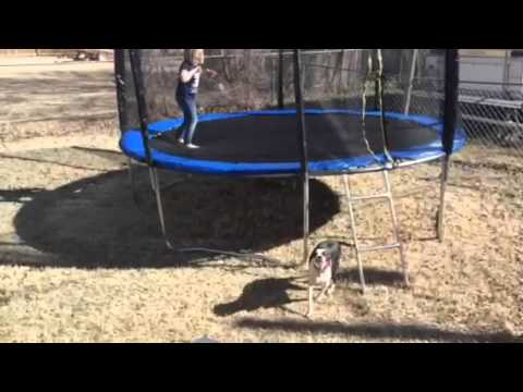 Best Choice Products 12 Foot Trampoline