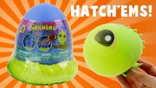 Hatch'ems Pop and Grow Dinosaur Eggs! Squishy Toys!Subscribe to Toy Reviews For You: bit.ly/1CyaPemFollow MeInstagram: http://instagram.com/toyreviewsforyouTwitter: https://twitter.com/ToyReviews4YouFacebook  https://www.facebook.com/pages/Toy-Reviews-For-You/119789888191540Music is from Audioblocks.com and the Youtube Library