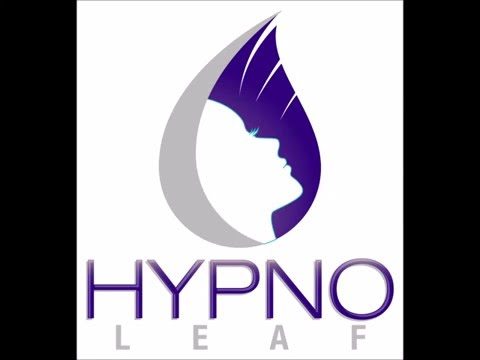 Introduction to HypnoLeaf