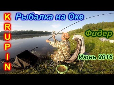 рыбалка на реке оке фидером