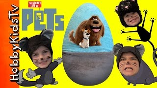 World's Biggest PETS Surprise Egg! Dogs + Cats Talking Toys. The Secret Life of PETS HobbyKidsTV full download video download mp3 download music download