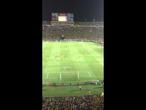 Video - Como no te voy a querer - Libres y Lokos - Tigres vs Inter Porto Alegre - Libres y Lokos - Tigres - México