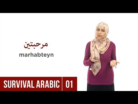 Learnarabicqasid youtube channel statistics subscriber stats survival arabic lesson 01 greetings m4hsunfo