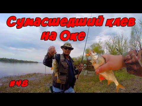 ограничения на ловлю рыбы на оке