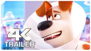 Video SECRET LIFE OF PETS 2 : 12 Minute Clips + Trailers (4K ULTRA HD) NEW 2019 MP3, 3GP, MP4, WEBM, AVI, FLV Mei 2019