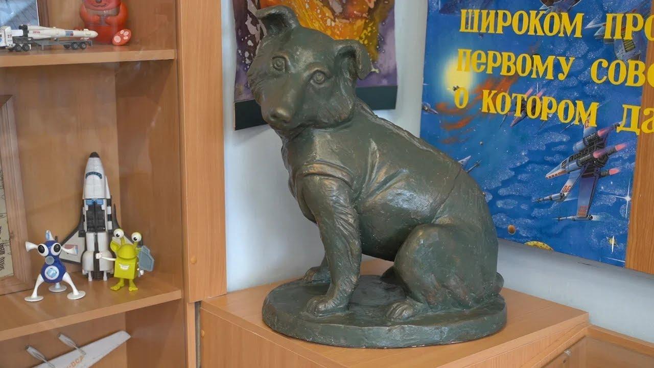 История собаки-космонавта Звездочки