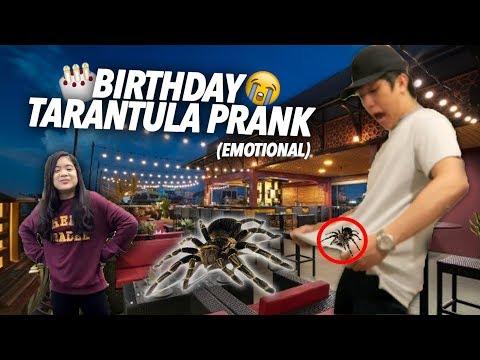 Download Lagu TARANTULA PRANK ON BIRTHDAY!! | Ranz And Niana Music Video