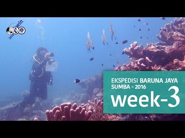 Ekspedisi widyanusantara KR baruna jaya VIII – Perairan sumba 2016