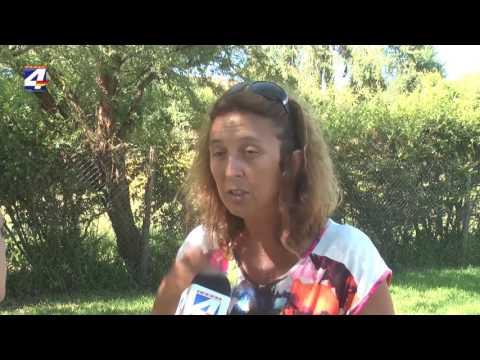Violencia Doméstica: Hay dos proyectos de ley a estudio del Parlamento