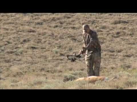 Archery Antelope Hunt