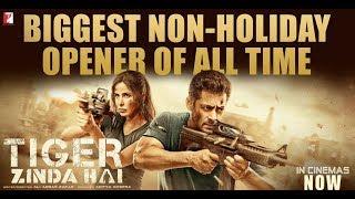 Nonton Tiger Zinda Hai   Full Movie  Fact   Salman Khan   Katrina Kaif   Ali Abbas Zafar Film Subtitle Indonesia Streaming Movie Download