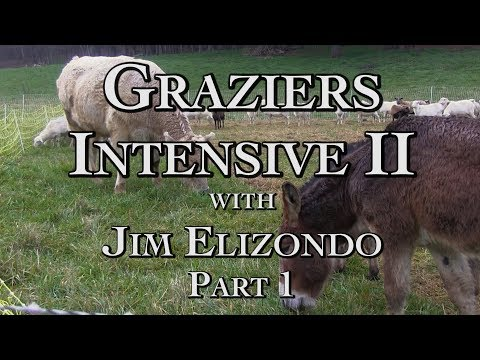 Graziers Intensive II Part 1