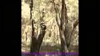 Mawla Band - Beibi Lyrik Eks Andhika Kangen Band Video