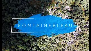 Fontainebleau | Enjoy Bouldering in the Summer (Bas Cuvier, Petit Bois, 91.1) by BlocBusters