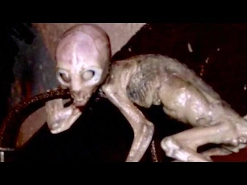 51 - 10 Things You Didn't Know About Area 51 Conspiracies surround this top-secret base. Find out what's not theory in 10 things you didn't know about Area 51. Ar...