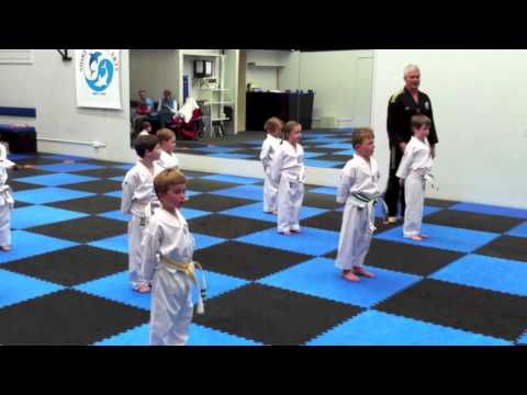 Caringbah Taekwondo Preschool Classes At Shire Martial Arts