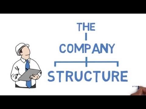 The Company Structure