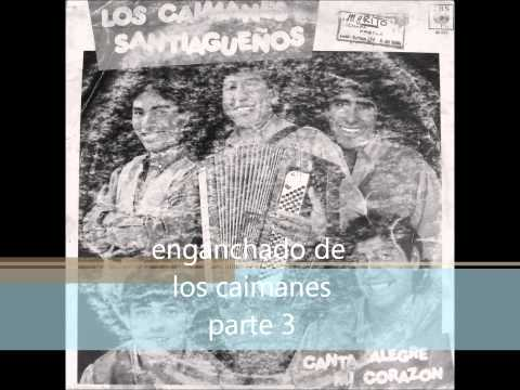 ENGANCHADO DE LOS CAIMANES SANTIAGUEÑOS PARTE 3/3