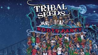 Download Lagu Tribal Seeds - Roots Party Mp3