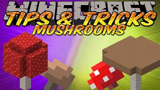 Minecraft Tips and Tricks - How to place mushrooms in sunlight - post 1.2.4 - Giant Mushrooms