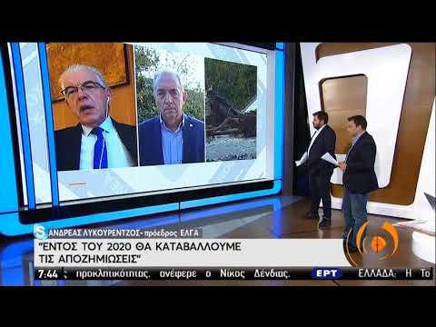 Καρδίτσα | Εικόνες καταστροφής | 22/09/2020 | ΕΡΤ