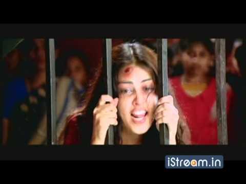 Video Happy Climax scene || Happy Telugu Full Movie || Allu Arjun, Genelia download in MP3, 3GP, MP4, WEBM, AVI, FLV January 2017