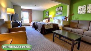 Stony Creek (VA) United States  City new picture : Sleep Inn & Suites - Stony Creek, VA