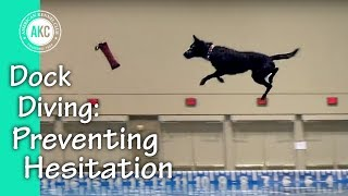 Dock Diving How-To Step #4 : Preventing Hesitation