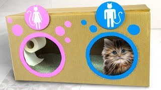 Video DIY Cat Toilet | Craft Ideas for Kids on Box Yourself MP3, 3GP, MP4, WEBM, AVI, FLV Januari 2018
