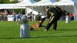 Dogtra - Finale Ring 2012 Albertville