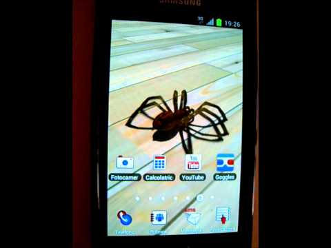 Video of Tarantula 3D live wallpaper