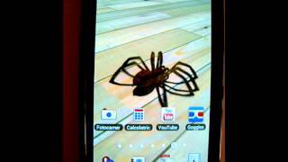 Tarantula 3D live wallpaper YouTube video