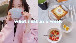 (realistic) what i eat in a week