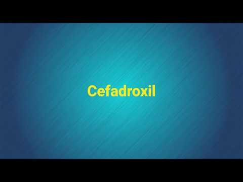 Cefadrolxil