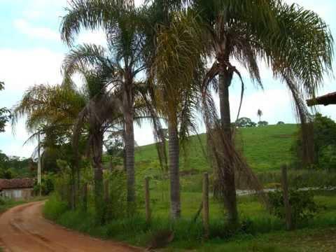 Estrada Real - Bom Jesus do Amparo - Ipoema