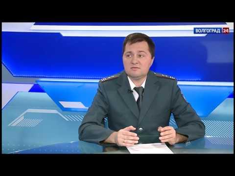 Александр Егоров, начальник отдела работы с налогоплательщиками УФНС России по Волгоградской области