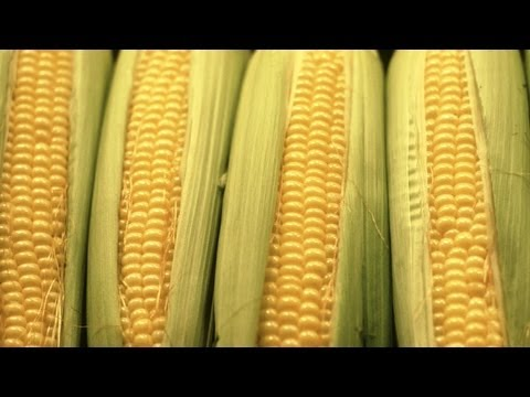 Garden to Table: Mexican Corn on the Cob