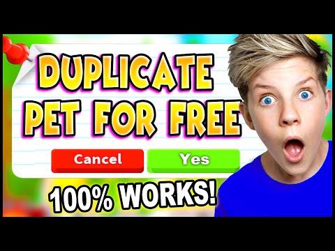 How To DUPLICATE PETS in Adopt Me!! 100% WORKING 2020!! *WORKING* TikTok Hacks Adopt Me! Prezley