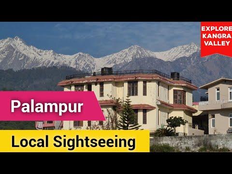 Places to Visit in Palampur  Kangra Valley Himachal Pradesh Road Trip P-5  Neugal Tea Chamunda Devi