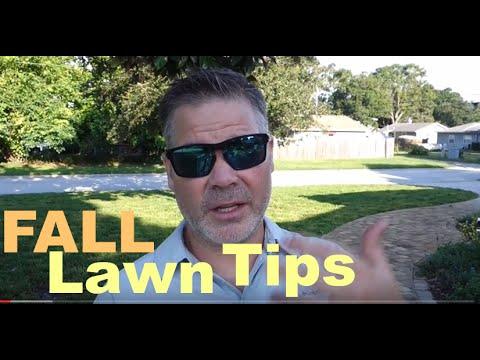 Fall Lawn Tips - Cool Season Grasses