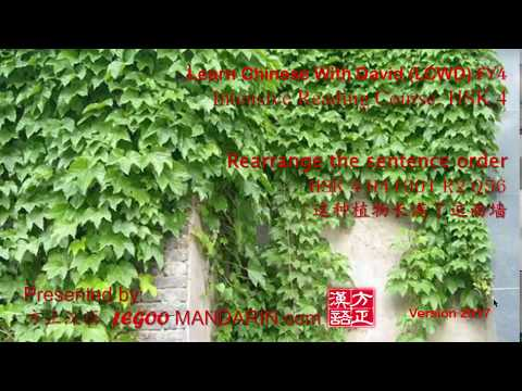 HSK 4 H41001 R2 Q56 这种植物长满了这面墙 This plant is covering this wall - Learn Chinese Online