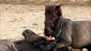 Niewiarygodne jak blisko jest ta kobieta z końmi.