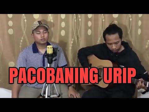 Download Lagu Pacobaning Urip -  Ciptaan : Ndaru Breng Cover By GuyonWaton Music Video