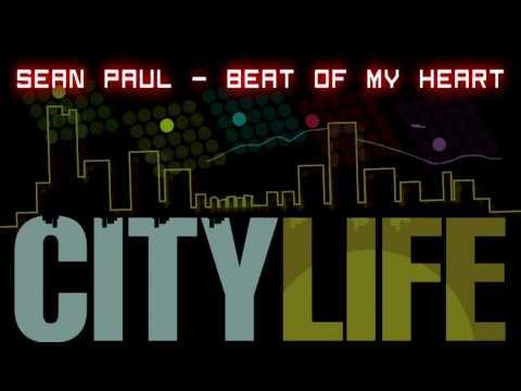 Tekst piosenki Sean Paul - Beat of my heart po polsku