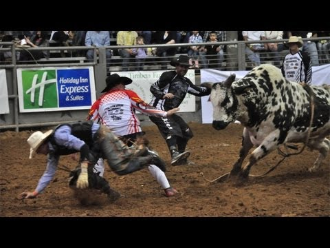 bulls - A great bucking bronco can be worth hundreds of thousands of dollars, and an entire industry has sprung up that's dedicated to breeding these superior bulls....