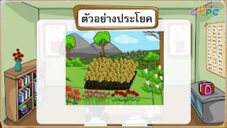สื่อการเรียนการสอน ทบทวนการผันวรรณยุกต์ ป.1 ภาษาไทย