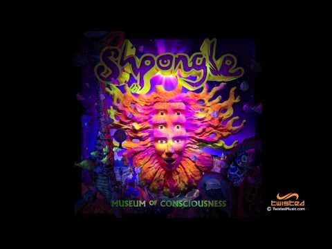Tekst piosenki Shpongle - The Aquatic Garden Of Extra Celestial Delights po polsku
