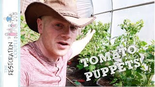 It's time to tackle the tomato plants!  We are using the string support method in the polytunnel.--- CLICK SHOW MORE FOR LINKS AND RESOURCES ---CONTACT USrestorationcouple@gmail.comOUR SOCIAL NETWORKSFacebook - https://www.facebook.com/restorationcoupleYouTube - https://www.youtube.com/therestorationcoupleTwitter - https://twitter.com/RestoCoupleInstagram - https://instagram.com/restorationcouple/OUR BLOGhttp://www.restorationcouple.com/